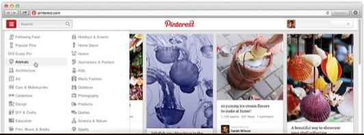 Pinterest Navigation